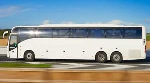 Mini Coach Bus Rental Services