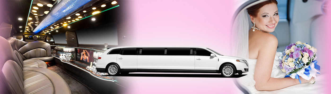 Limousine Business Plan