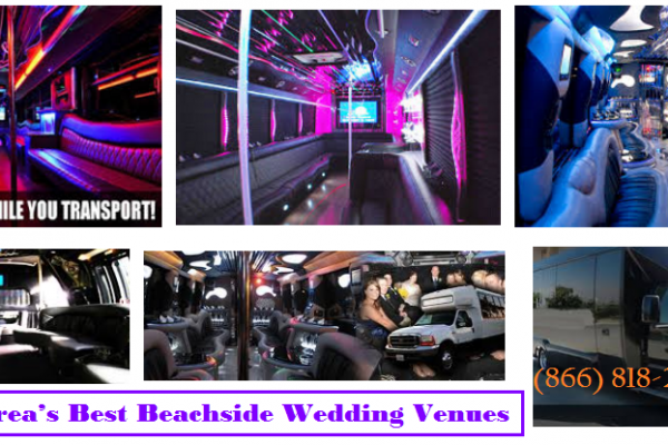 Cheap Party Bus Company