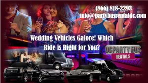 Which Wedding Vehicle is Right for You?